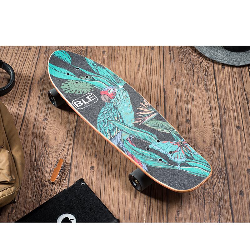 27inch cruiser skateboard-wood series