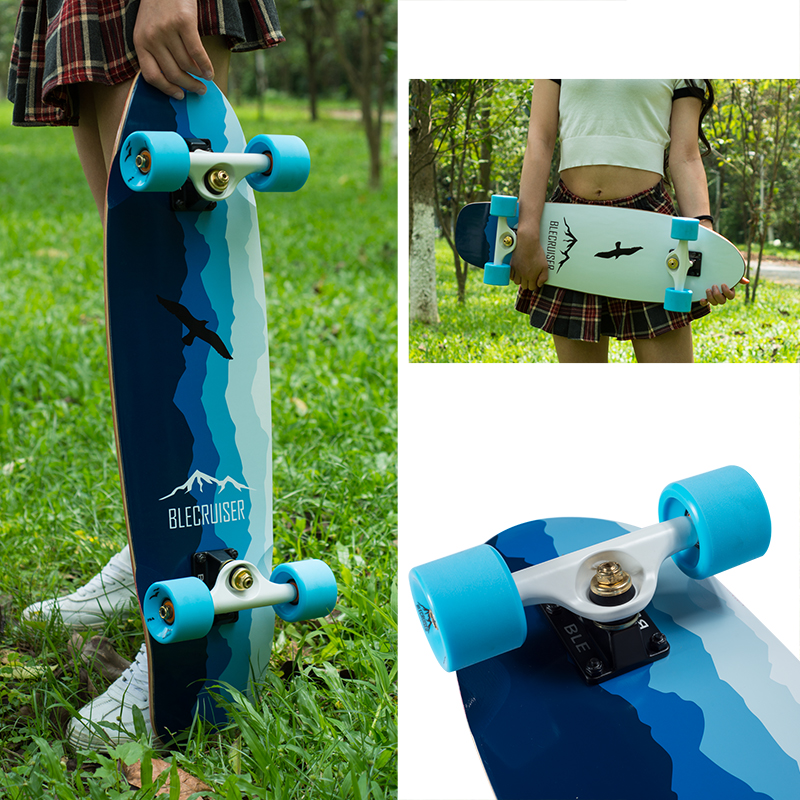 27inch Crusier Skateboard-seagull series